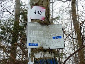 Photo: Ab nun geht's rot und blau markiert weiter; ForstSTRASSE ist heute eine maßlose Übertreibung.