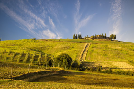 Summer in Tuscany – Best way to enjoy Summer in Tuscany