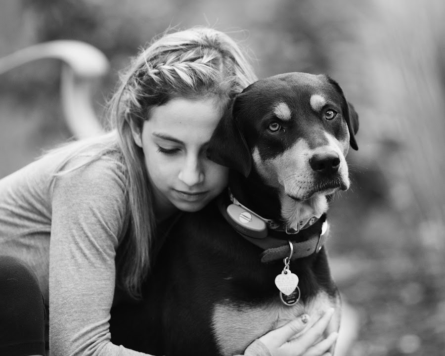 Puppy Love by Peter M  - Animals - Dogs Portraits ( canon, rotti, children, chicago, coonhound, portrait, rottweiler,  )