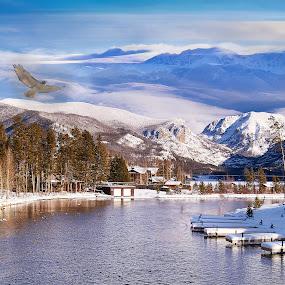 Don't Believe It  by Kyle Kephart - Landscapes Mountains & Hills ( water, bird, mountains, landscape, photoshop )