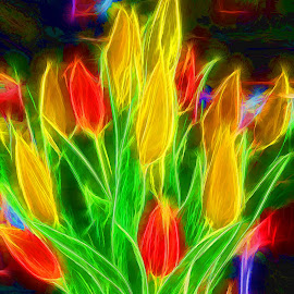 Tulips Aglow by Millieanne T - Digital Art Abstract