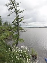 Photo: Берег озера.