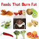Fat Burning Foods Download on Windows