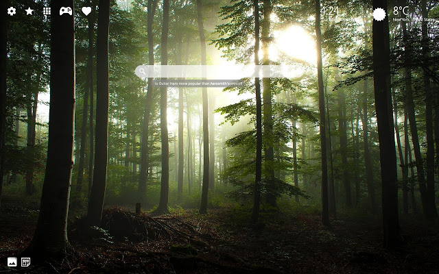 Forest Wallpaper Hd Chrome New Tab