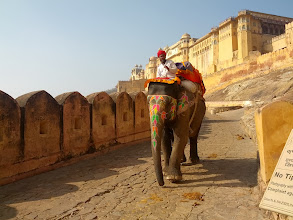 Photo: At Amber fort, Jaipur.