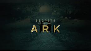 Secrets of the Lost Ark thumbnail