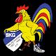 SKG Bauschheim Download on Windows