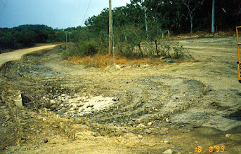 Photo: AUS-HYDR09 - Australia this inflow end of a culvert is protected by vetiver. This should help keep large objects and sediment from blocking the culvert