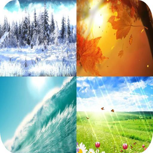 Four Seasons Live Wallpaper