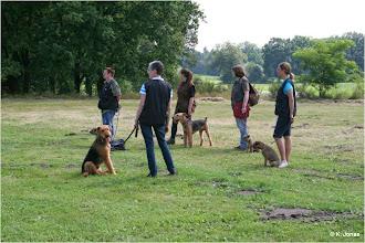 Photo: Gesellschaftsspiele für Border und Anhang