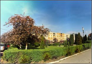 Photo: Calea Victoriei, nr.31 - Parcul Bisericii Ortodoxe,  Măr decorativ  (Malus Royalti)  - 2018.04.19