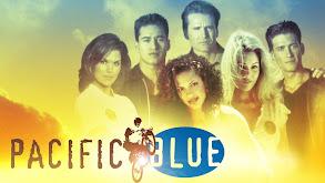 Pacific Blue thumbnail