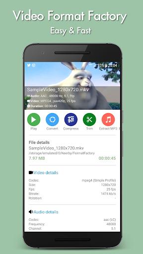 Video Format Factory 5.2 screenshots 1
