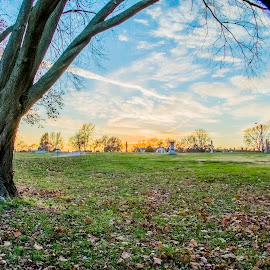 HDR, first try. A day in the park by Dan Miller - Novices Only Landscapes ( field, blue sky, hdr, tree, park, bright, sunset,  )