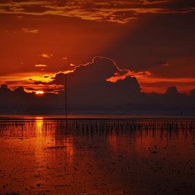 light and shadow by Greg Crisostomo - Landscapes Sunsets & Sunrises ( shore, reflection, shadow, sunset, light, , #GARYFONGDRAMATICLIGHT, #WTFBOBDAVIS )