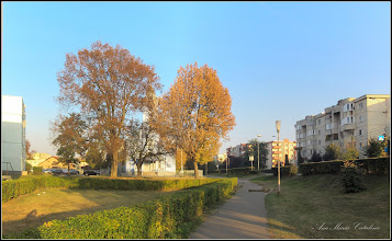 Photo: Turda - Calea Victoriei, Mr.1, spatiu verde  - 2018.10.09
