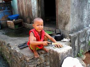 Photo: Enfant birman