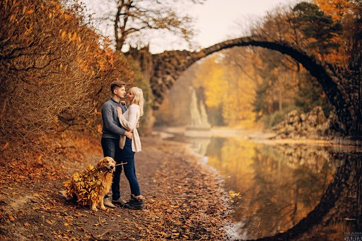Wedding photographer Darya Bulavina (Luthien). Photo of 07.11.2017