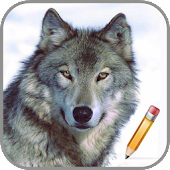 How To Draw Wolf