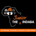 The Junior Indaba icon