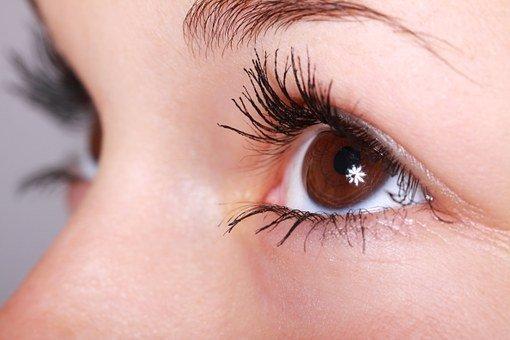 Beautiful, Close-Up, Eye, Eyebrows