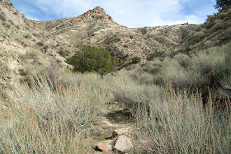 Photo: It didn't take long for the trail to get even more rugged.
