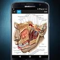 RF Human Anatomy Atlas icon