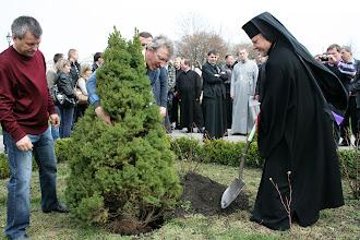 Photo: Архиєрей береться за садіння декоративного дерева