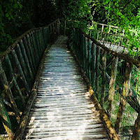 Ponte di legno di