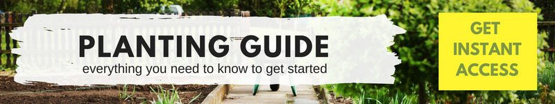 Get your free planting guide