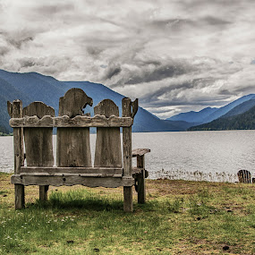 Lakeside Chair by Richard Michael Lingo - Artistic Objects Furniture ( chair, olympic national park, lake, artistic objects, furniture )