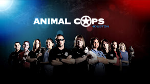 Animal Cops: Houston thumbnail