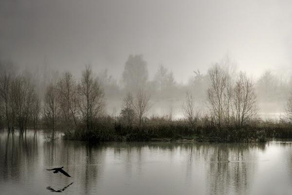 Nebbia sull'oasi di Fotodiale