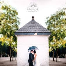 Wedding photographer Elias Gonzalez (eliasgonzalez). Photo of 17.11.2015