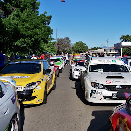 Targa High Country Rally by Sarah Harding - Novices Only Sports ( racing, cars, outdoors, novices only, sport,  )