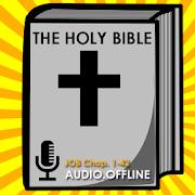 Audio Bible Offline : Job
