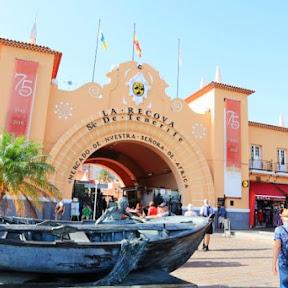 【世界の市場】スペイン・テネリフェ島の地元民の台所 / エキゾチックな食材が集まるアフリカマーケットへ行ってみよう!