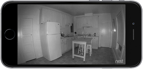 Nest cam night vision