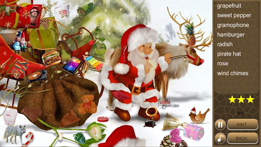 Hidden Object Christmas 2015