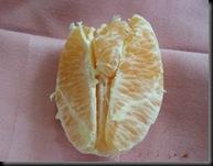 Uma laranja com algo de muito familiar...