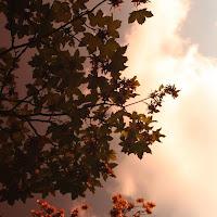Rosso di sera bel tempo si spera di
