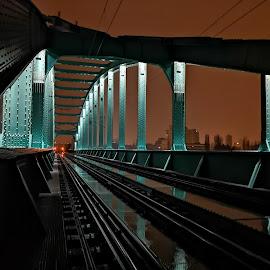 by Zeljko Kliska - Buildings & Architecture Bridges & Suspended Structures ( city, night, bridge, railway )