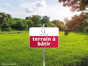 terrain à Saint-Martin-sur-Nohain (58)