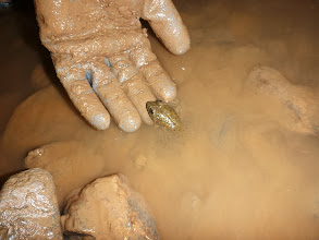 Photo: Frog well inside the cave...Stpeh's hand for scale