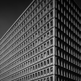 lines pattern by Orel A Shaï - Buildings & Architecture Office Buildings & Hotels ( black and white, minimal, france, architecture, lyon )