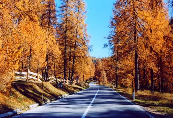 La Strada dei Larici di AjejeBrazorf