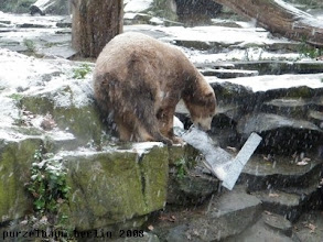 Photo: Knut erforscht die Anlage ;-)