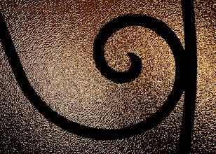 Photo: Circle of Life