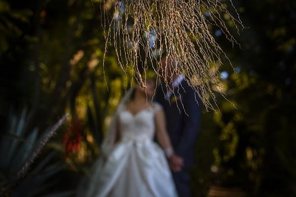 Fotógrafo de bodas Andres De La Paz (zapaleda). Foto del 04.11.2016