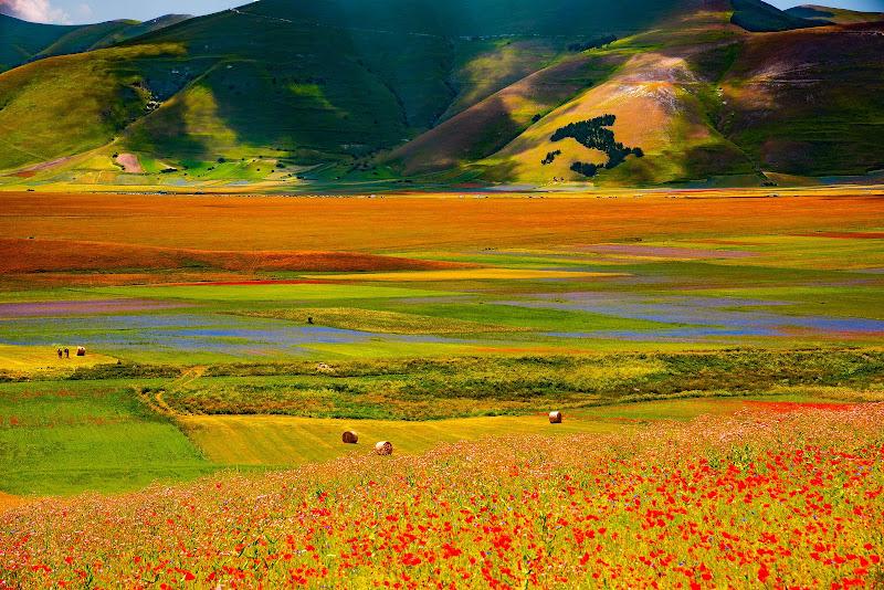 I colori della pianura di Alduccio